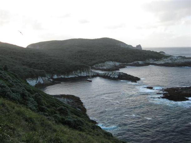 Snares Islands, New Zealand: Ho Ho Bay - looking North.