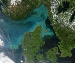 Algal bloom off the coast of Denmark.