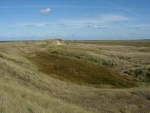 Dune Slack