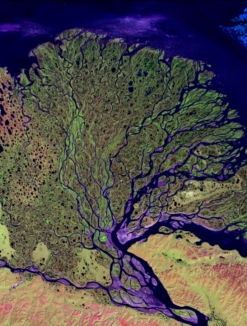 Satellite image of the Lena delta (Image courtesy of Fugro)