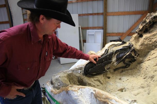 Clayton Phipps, 'dinosaur cowboy, and Nanotyrannus