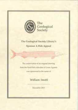 William Smith Certificate Web small