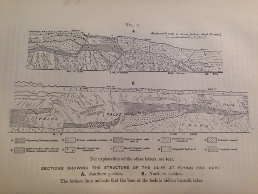 Cross Section taken from 'A  Monograph of Christmas Island' by Charles W. Andrews published in 1900.