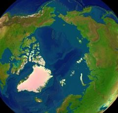 Artificially coloured topographical map of the Arctic region