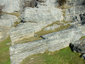 eglwyseg oolitic limestone