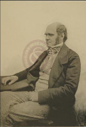 Portrait of Charles Robert Darwin, elected a Fellow of the Geological Society on 30 November 1836 (no.1127). Source: Geological Society Library Flickr https://www.flickr.com/photos/geologicalsocietylibrary