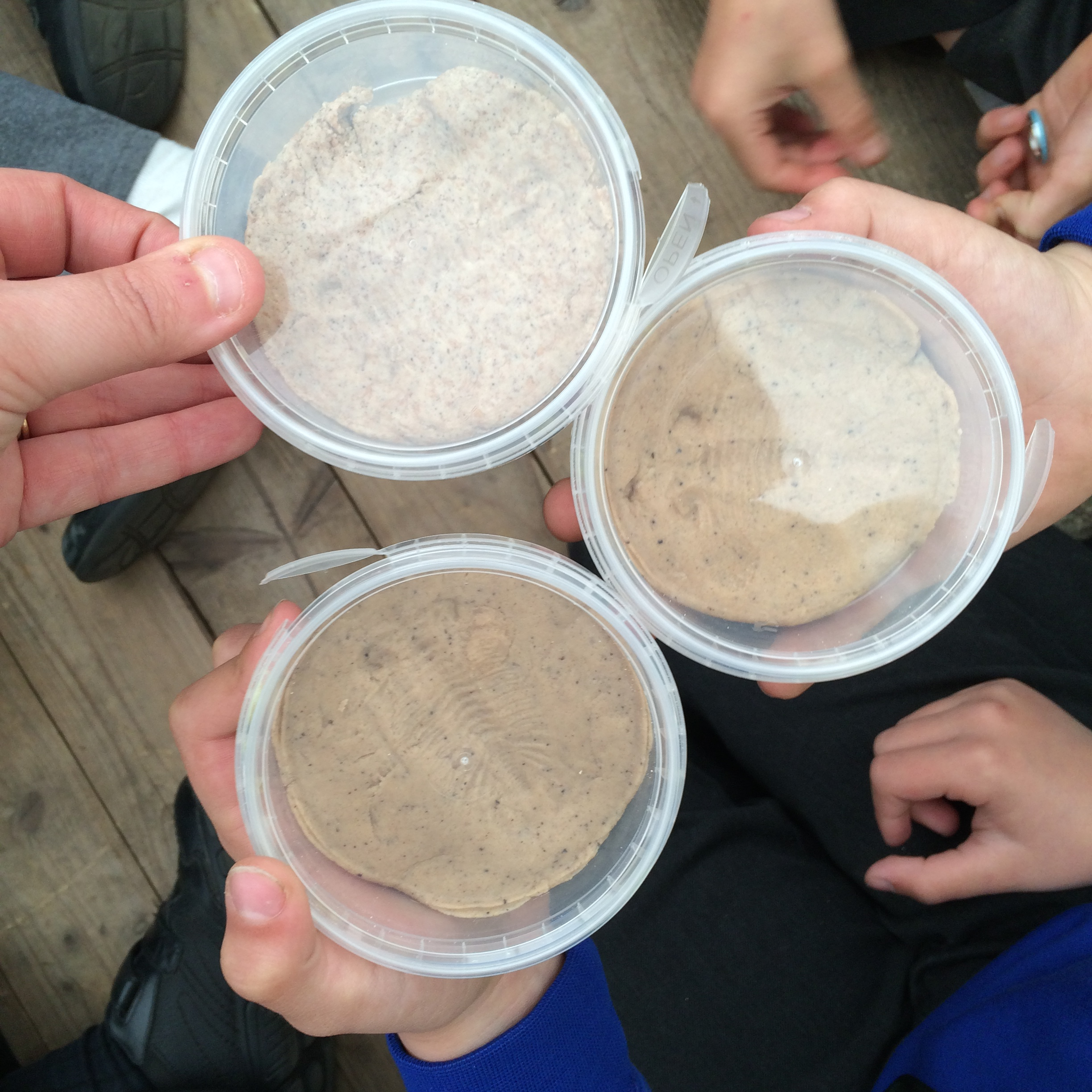 the lyme regis fossil festival make your own fossil cast