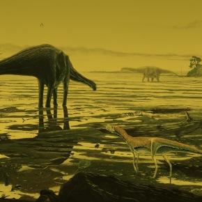 Rare Scottish fossil tracks are a 'dinosaur disco preserved instone'