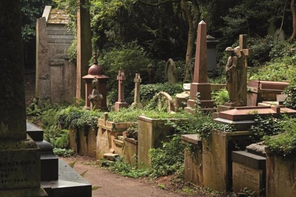Highgate, c Highgate Cemetery