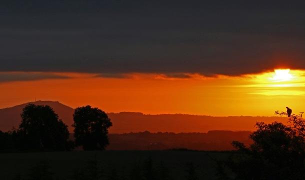 The Wrekin, sunrise from Pulverbatch c Jackie Tweddle