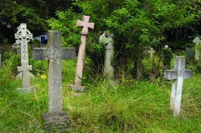 Celebrate Science in aCemetery