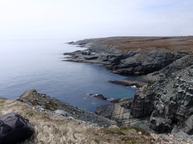 From seabed to seabed - the Ediacaran age strata of Newfoundland's Mistaken Point were originally deposited on the seabed some 565 million years ago and are now being worn away by Atlantic waves. (photo courtesy of Dr Emily Mitchel)