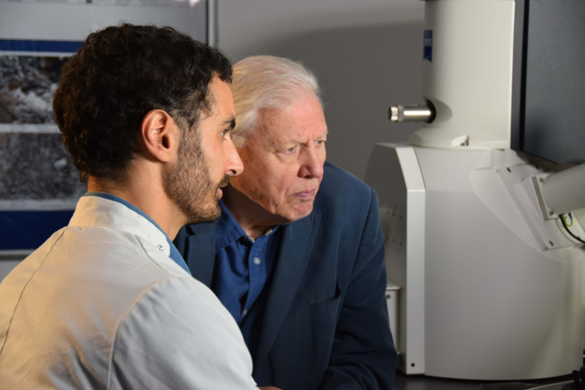 Attenborough And The Sea Dragon Geological Society Of London Blog