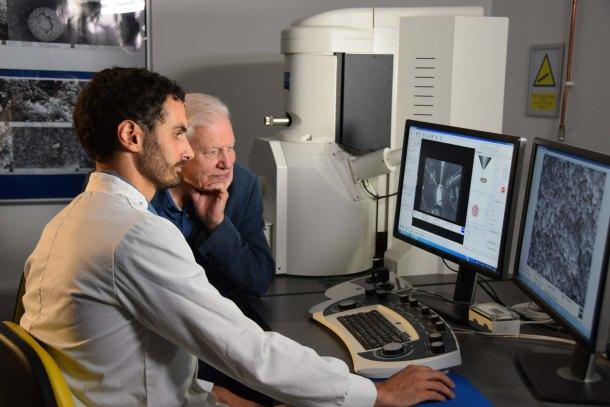 Media Attenborough & Fiann electron microscope screen