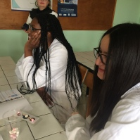 Making CO2 molecules with marshmallows.