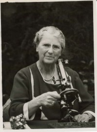 Portrait of Lady MacRobert at work with a microscope and hand specimen on her right. (C) The MacRobert Trust / Trowelblazers.