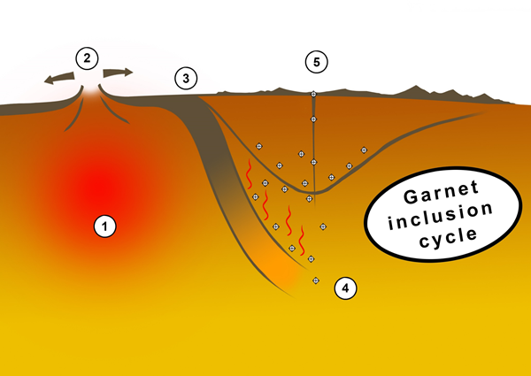 Figure 3. Schematic cycle of material forming garnet inclusions in diamonds. Not to scale. 1 – the material that will form garnets is a part of mantle peridotite. 2 – after partial melting of peridotite, it erupts to the surface as mid-ocean ridge basalt. 3 – tens of millions of years later it is transported back into the mantle via subduction. 4 – formation of majoritic garnets at great depths of 250-550 km; encapsulation by diamond. 5 – ascent to the surface via kimberlite magmatism.